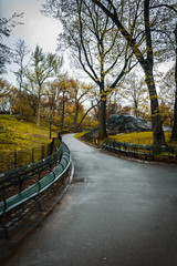 Fall Walking Path through Central Park, New York, USA