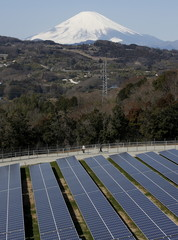 Solar panels are seen at a solar power facility as snow covered Mount Fuji is background in Nakai town, Japan