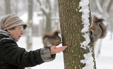 A woman feeds a squirrel during a cold day in a park as temperature on Monday