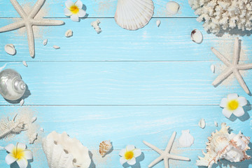 Deck with shells