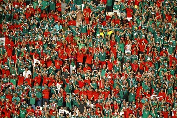 Fans of Mexico cheer during their 2014 World Cup Group A soccer match against Brazil at the Castelao arena in Fortaleza
