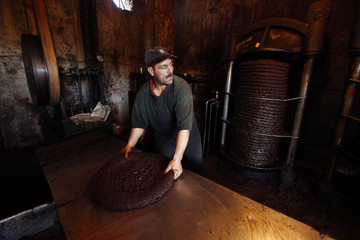 A worker prepares to extract oil from olive paste at a traditional olive oil processing factory in the eastern village of Al Kalaa, near Bejaia