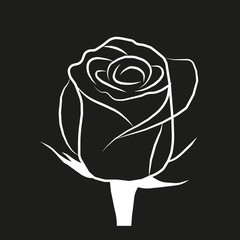 vector image roses on a black background