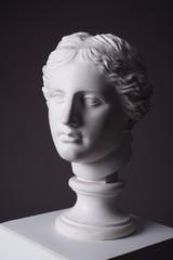 gypsum statue head