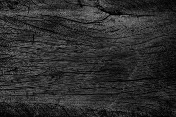 Wood textured close up background.