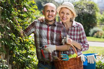 Elderly cheerful couple engaged in gardening