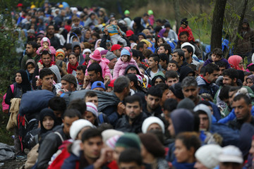 Migrants walk to the border with Hungary after arriving by train at Botovo, Croatia