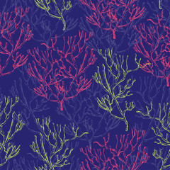 Seamless pattern with marine plants, corals and seaweed. Vintage hand drawn marine flora. Vector illustration in line art style.