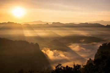 Scenic landscape sunlight shine on foggy hill
