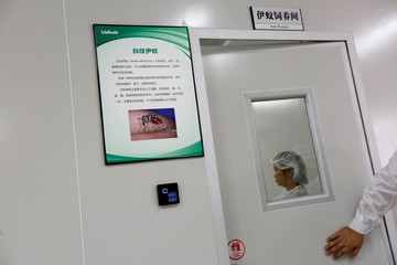 An introduction to the aedes mosquito is displayed inside Sun Yat-Sen University-Michigan State University Joint Center of Vector Control for Tropical Disease in Guangzhou, China
