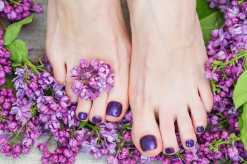 Wall Murals Pedicure Woman feet with dark purple pedicure and beautiful fresh lilac flowers, beauty treatment