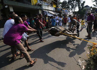 Indonesian Muslim men drag a cow to be slaughtered and the meat distributed to the poor at Matraman mosque of Jakarta