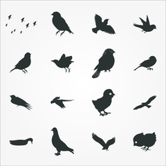 birds icon set
