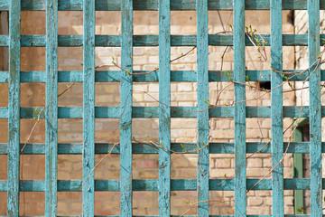 Green wooden trellis, lattice on brick background