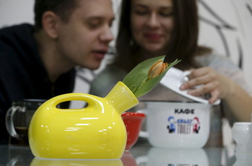 Flower vase designed in likeness of urinal is seen at Crazy Toilet Cafe in central Moscow