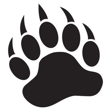 Bear Paw with claws