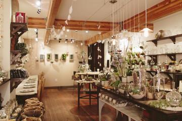 Interior of plant shop