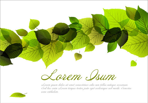 Spring Leaves Flyer Template