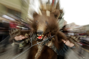 A man dressed in a bear costume takes part in the Lole Parade, a traditional German event from the 17th century, in the Transylvanian town of Sibiu