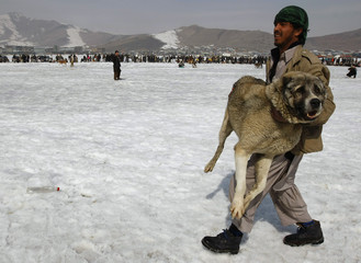 An Afghan man carries his dog after winning at a traditional dog-fight competition in Kabul