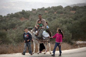 A Palestinian family returns after harvesting olives at a grove north of Ramallah