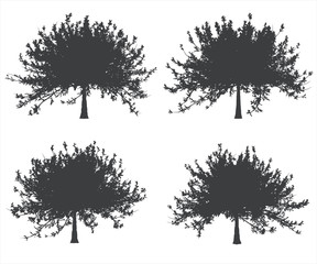 Black and white single tree shapes