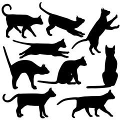Black and white cat silhouettes