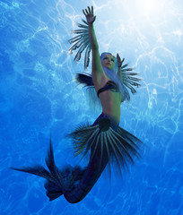 Mermaid Lorelei - A mermaid is a fantasy creature from folklore and myth that has a fish tail and a woman's upper body.