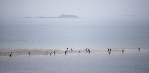 A general view of people who dot the beach as they dig for shellfish during a record low tide in Saint Malo,