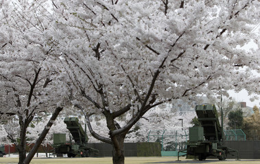 PAC-3 land-to-air missiles are seen under cherry blossoms in full bloom at the Defence Ministry in Tokyo