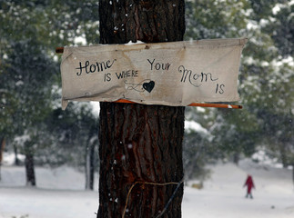 "A banner reading: ""Home is where your mom is"" is attached to a tree as a stranded Syrian refugee girl braves a snowstorm at a refugee camp north of Athens"