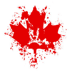 Canada maples leaf paint drops