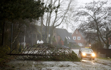 A car passes a fallen tree in the small village of Sankt Peter Ording at the North Sea
