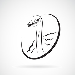 Vector of ostrich design on white background. Logo. Wild Animals.