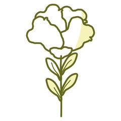 beautiful rose decoration icon vector illustration design