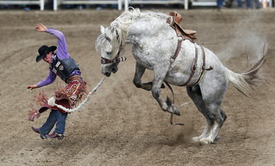 Elshere of Faith, South Dakota flies off the horse Virgil in the saddle bronc event during day 3 of the Calgary Stampede rodeo in Calgary,.