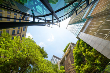 Low angle shot of modern glass buildings and green with clear sky background. Wall mural