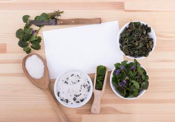 herbal salt / herbal salt, fresh and dried ground ivy