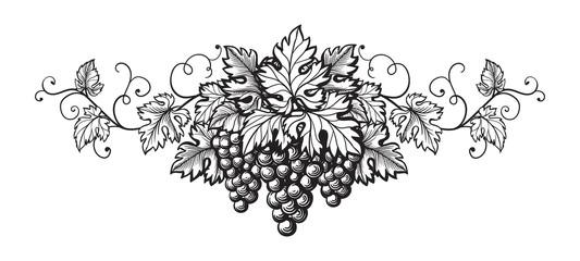 Set of grapes monochrome sketch. Hand drawn grape bunches. Fototapete