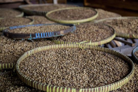Coffee Luwak, Indonesia