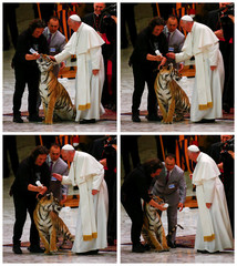A combination photo shows a tiger reacting as Pope Francis caresses it during a Jubilee audience for the circus performers and street artists in Paul VI Hall at the Vatican
