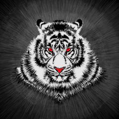 White tiger head / Vector illustration of white tiger