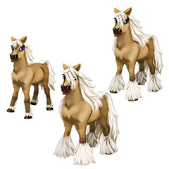 Stages of growing brown horse with a white mane