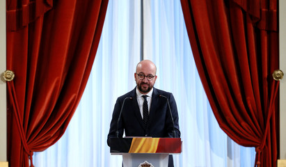 Belgium's PM Michel delivers a speech during a traditional new year reception at the Royal Palace in Brussels