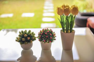 Tulip flower decoration