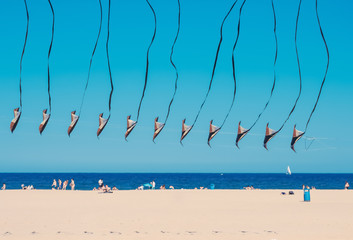 Chain of united kites flying on the beach sideways