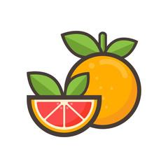 cartoon grapefruit vector