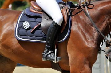 Fest im Sattel, Detailaufnahme von Reiter auf dem Pferd während eines Springreitturniers