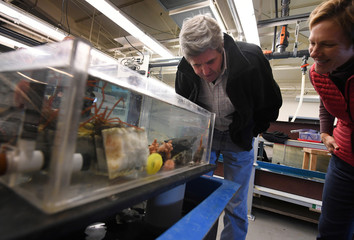 U.S. Secretary of State John Kerry inspects marine life at the Crary Science Center in Antarctica
