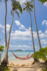 cradle on the beach with coconut tree